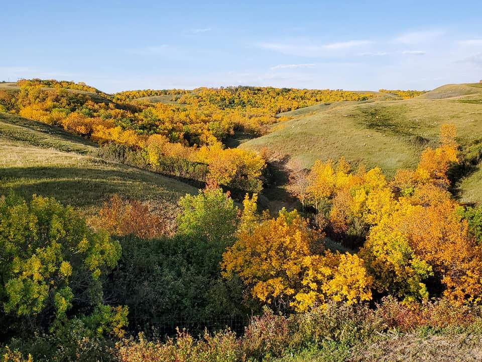 saskatchewan hunting view